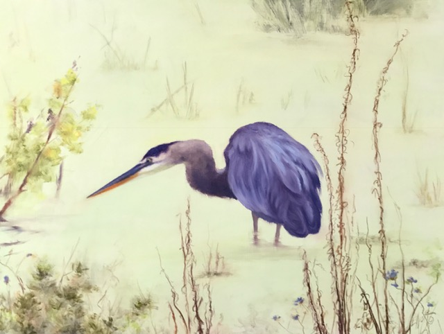 Great Blue in Marsh
